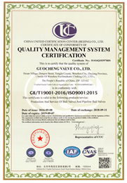 ISO9001ying文版