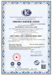 OHSAS18001英文ban